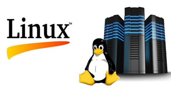 آزمون های شرکت Linux
